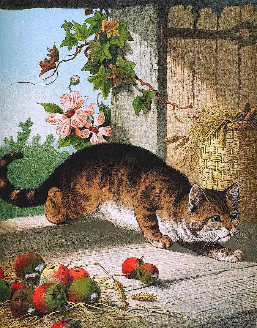 1880s farm cat, a color children's book illustration of a mouse hunting cat