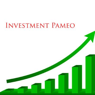 4 Pameo Yang Wajib Diterapkan Dalam Dunia Investasi