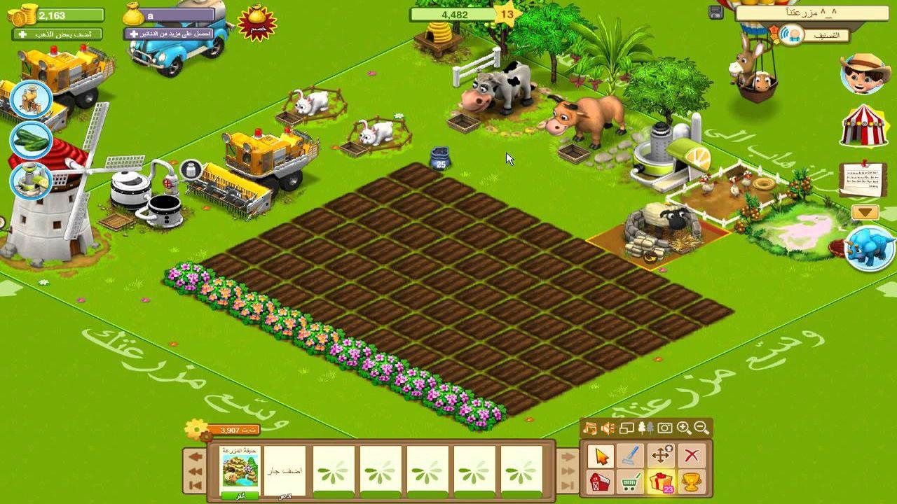 مزرعه سعيده