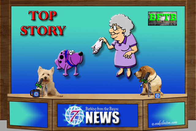 BFTB NETWoof News top story of elderly woman reunited with her pup