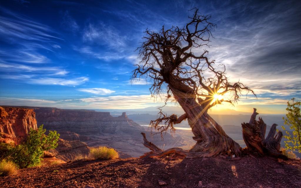 10 parcs d'État américains à voir au moins une fois