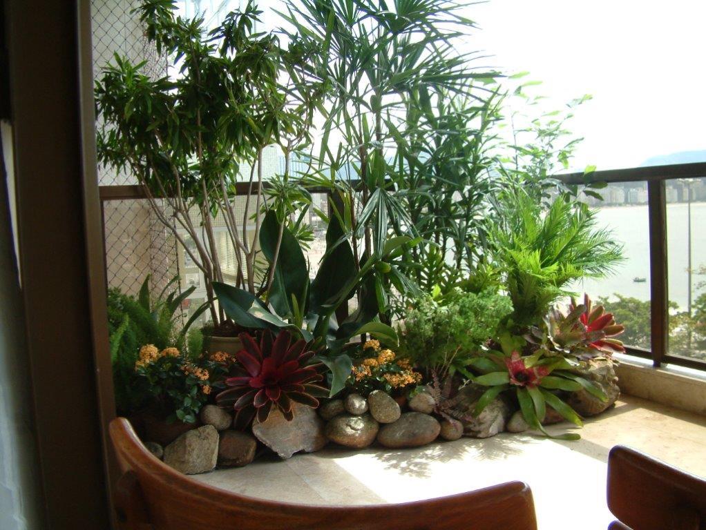 Decora interi plantas para pequenos espa os for Plantas para estanques pequenos