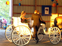 Entering Wedding in a Carriage