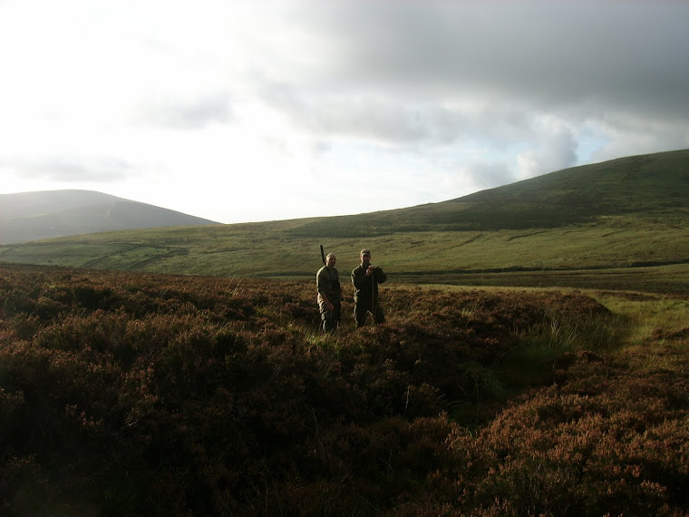 Hunting in Beautiful Wicklow