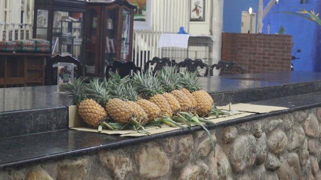 Makan Makan Di Villa Danialla