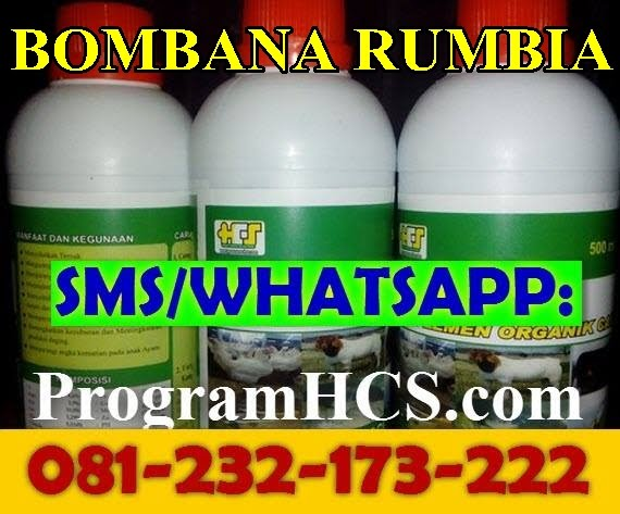 Jual SOC HCS Bombana Rumbia