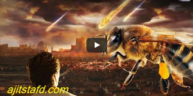 إنقراض النحل وعلامات يوم القيامة !