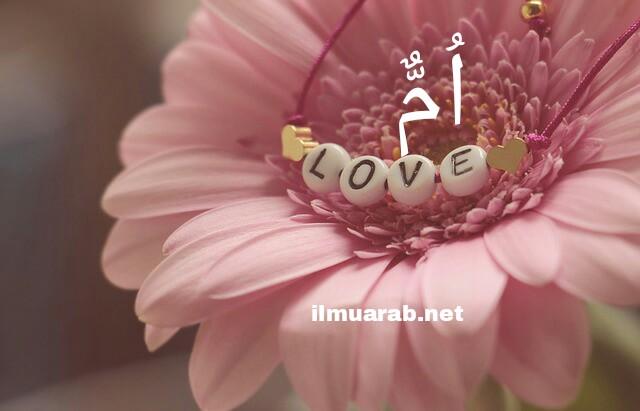 Cerita Tentang Ibu Dalam Bahasa Arab Beserta Artinya Ilmu Arab