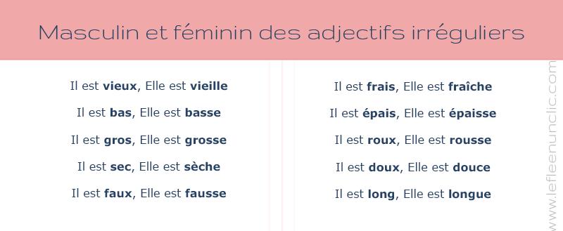 grammaire fle, français, masculin et féminin des adjectifs irreguliers