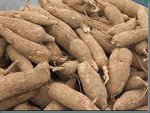 Nigeria Can Generate N20trn Revenue From Cassava – Adewumi 1