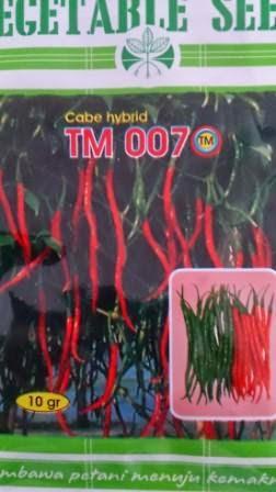benih petani,tahan virus, buah lebat, Tani Murni, Cabai TM 007, Cabai Keriting, tahan layu, tahan cekaman calcium