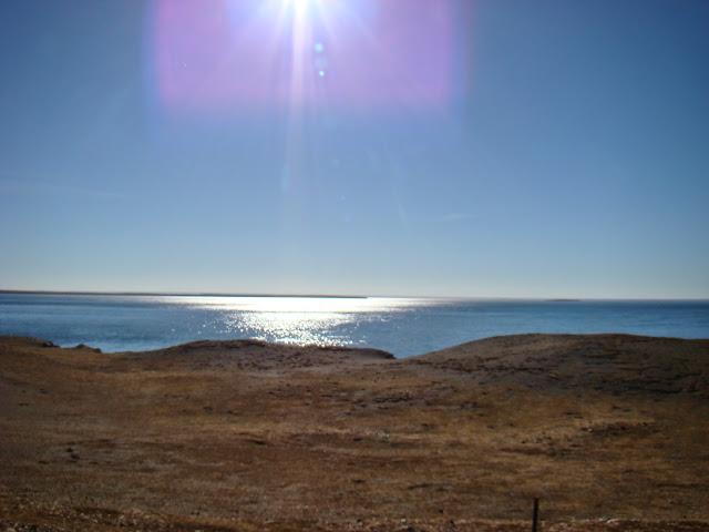 Punta Arenas, crucero por la Patagonia. Que hacer, a donde ir, que visitar