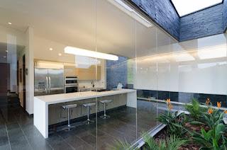 Las plantas de interior sanas son el mejor clarificador de la calidad de energía que tiene una casa.