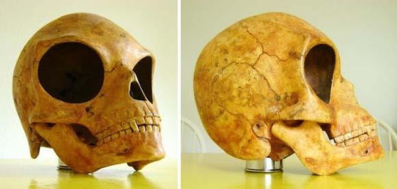 El cráneo de Sealand, ¿evidencia de vida extraterrestre en el pasado?