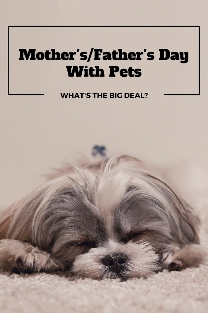 Mother's/Father's Day With Pets
