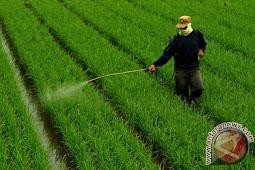 Penggunaan Pestisida dalam Islam Bolehkah?