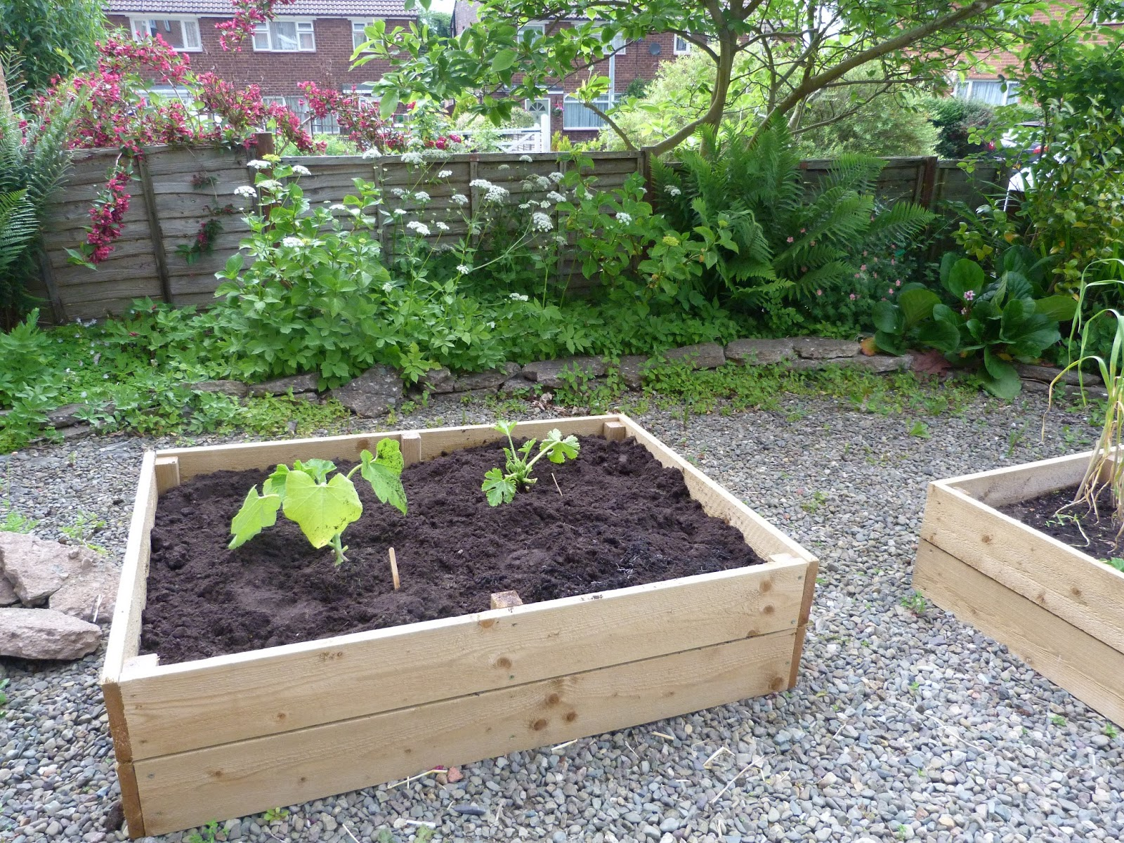 Polyculture Raised Bed