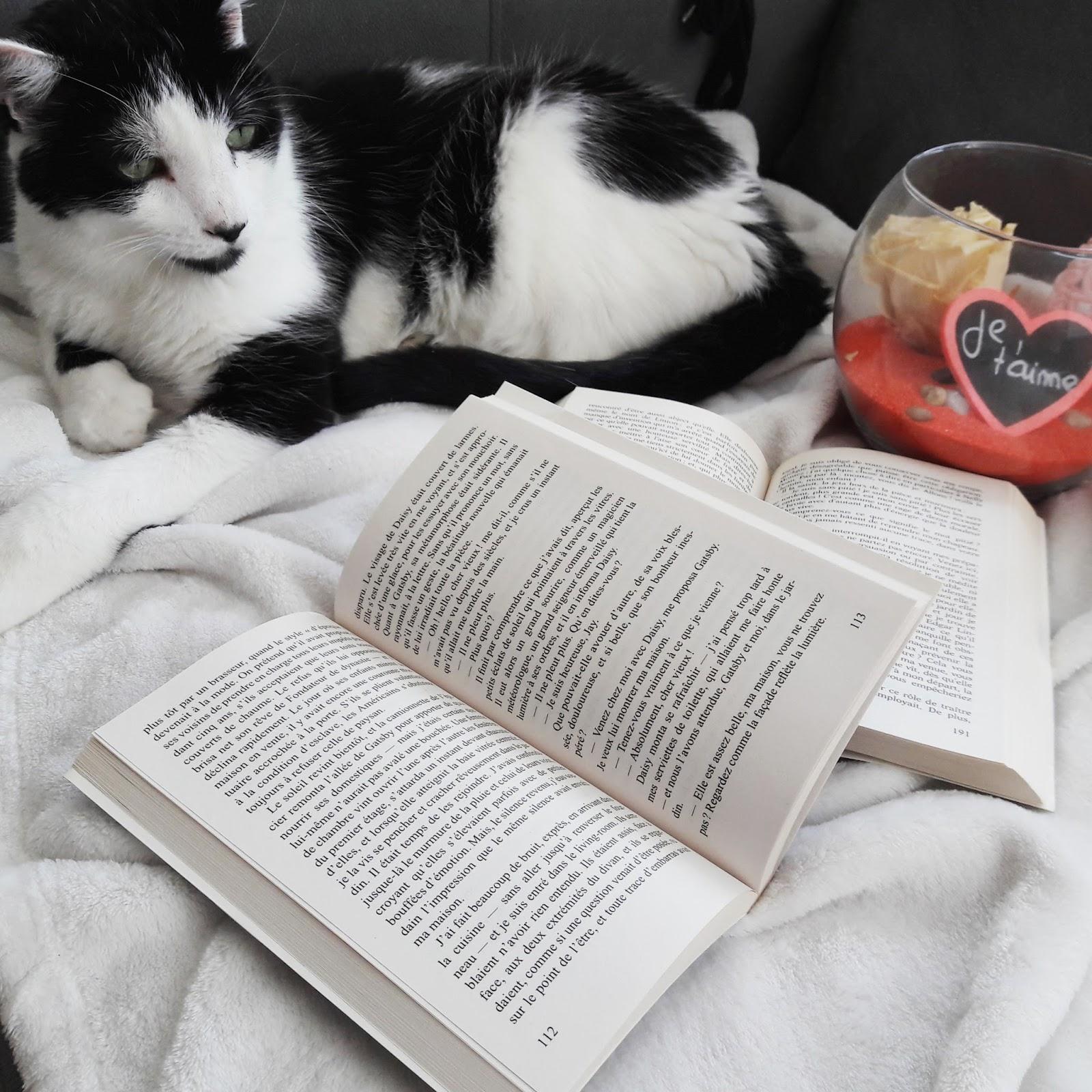 6 romans d'amour pour la Saint Valentin