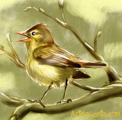 Härmsångare är en fågelmålning av Artmagenta