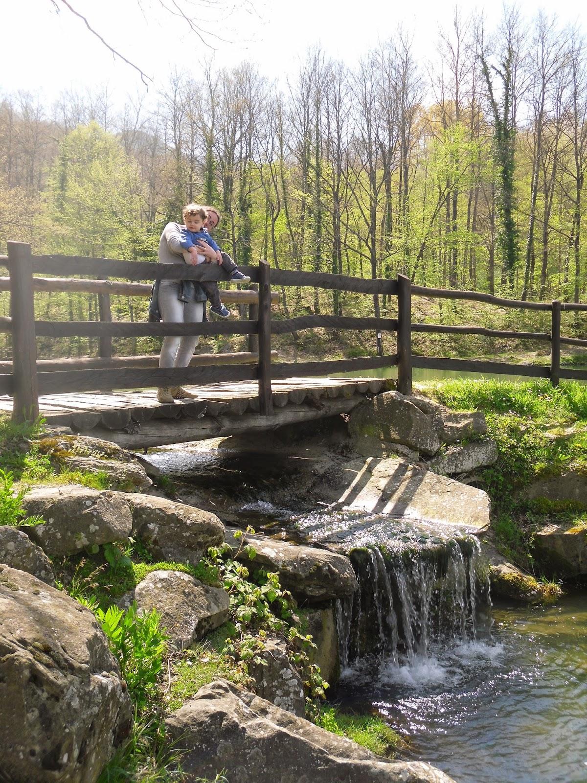 Mamma aiuta mamma relax fra le montagne romagnole al lago pontini - Lago lungo bagno di romagna ...