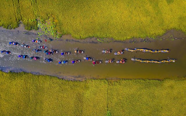 Hàng trăm con thuyền nối đuôi nhau trong lễ rước rồng đầy màu sắc trên dòng sông, tạo nên không khí sôi động, nhộn nhịp. Ngoài ra, ngay trên thuyền, du khách còn có cơ hội vừa ngắm cảnh thiên nhiên lãng mạn, yên bình, vừa được thưởng thức chầu văn, một loại hình nghệ thuật ca hát cổ truyền dân tộc.