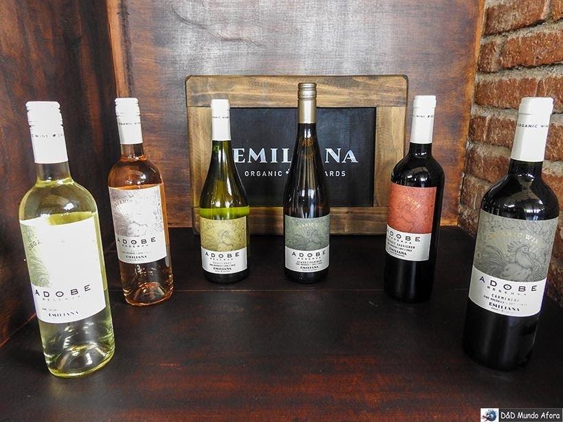 Vinhos da Vinícola Emiliana - Vinícolas chilenas: Valle Casablanca e Concha Y Toro.