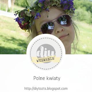 https://diytozts.blogspot.com/2018/07/33-wyzwanie-polne-kwiaty.html