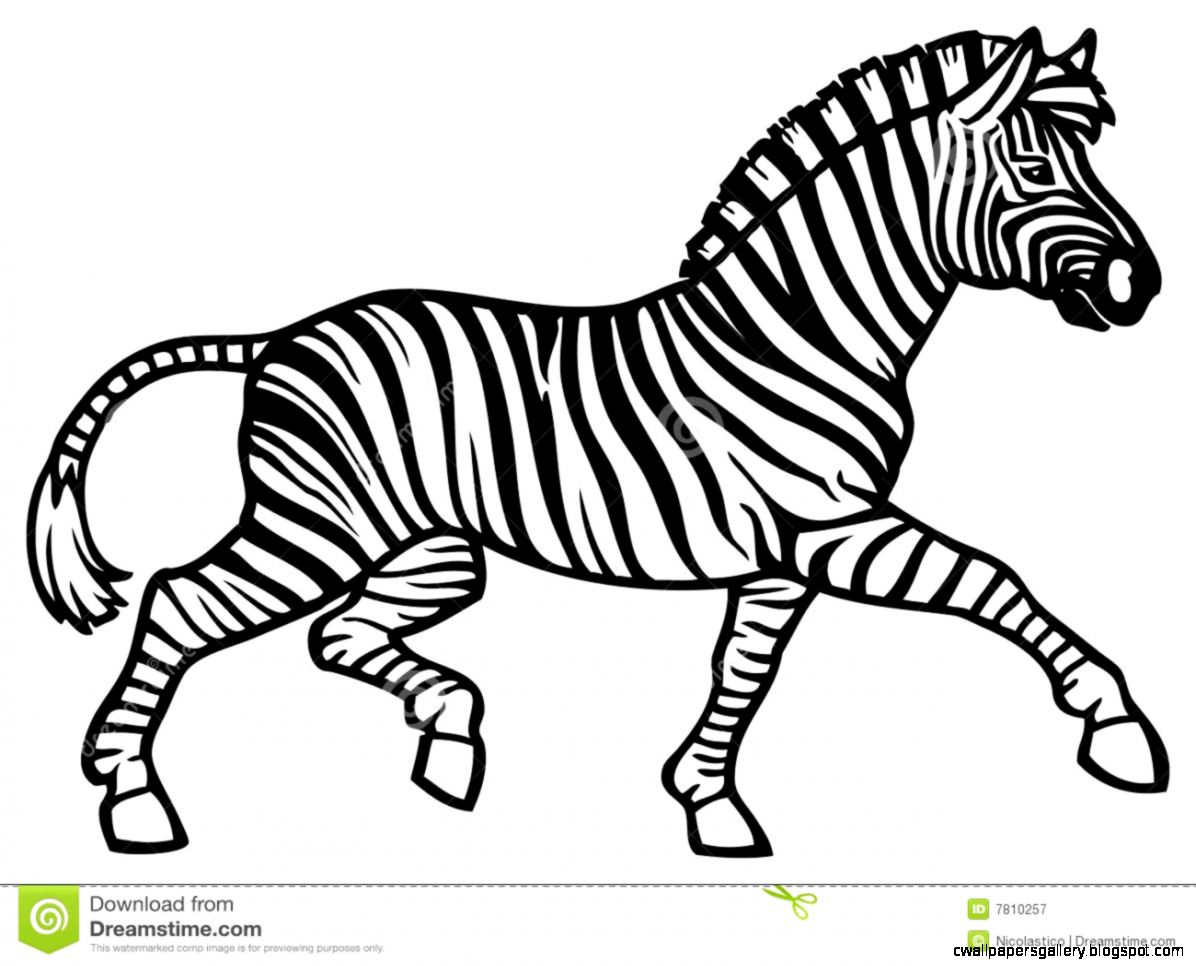 Zebra Clipart Black And White | Wallpapers Gallery