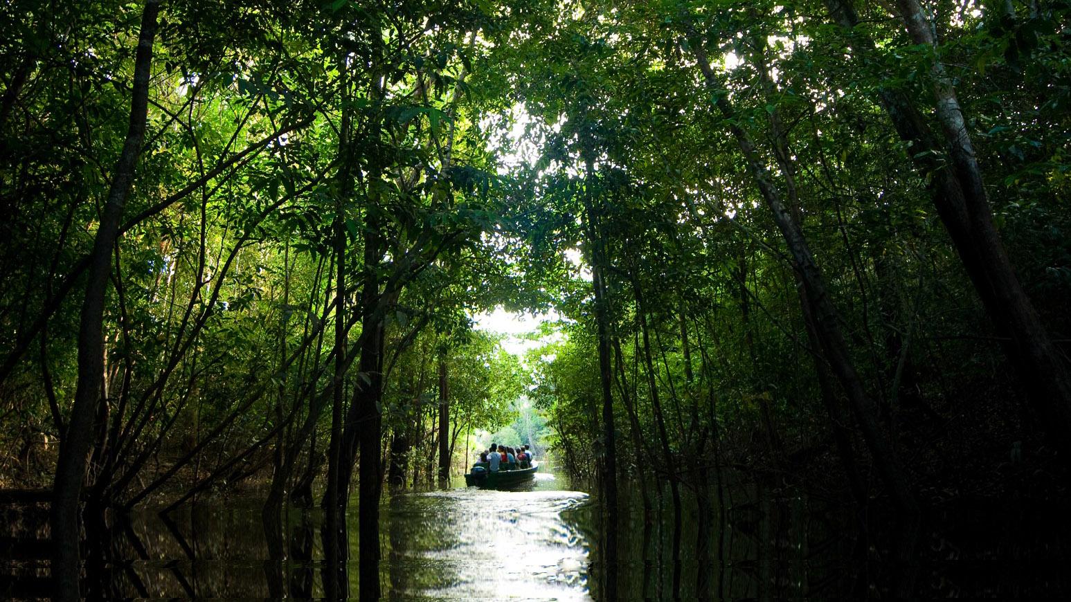 Turismo Ecológico na Amazônia