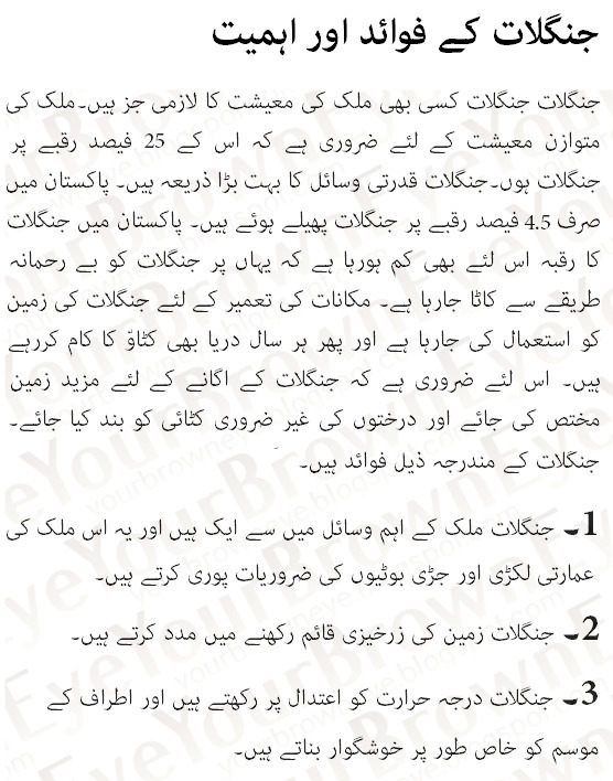 Importance of Forests In Urdu Essay Benefits of Forests In ...