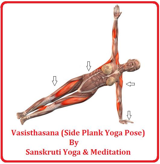 SANSKRUTI YOGA & MEDITATION: Vasisthasana (Side Plank Yoga ...