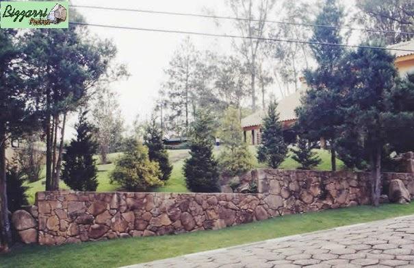 Nessa rua meio inclinada construímos o muro de pedra moledo com acabamento da pedra a nível e em cada degrau executamos o detalhe em pedra encorporando com a execução do paisagismo.