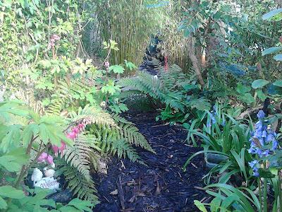 Make a secluded woodland garden for wildlife and children Green Fingered Blog