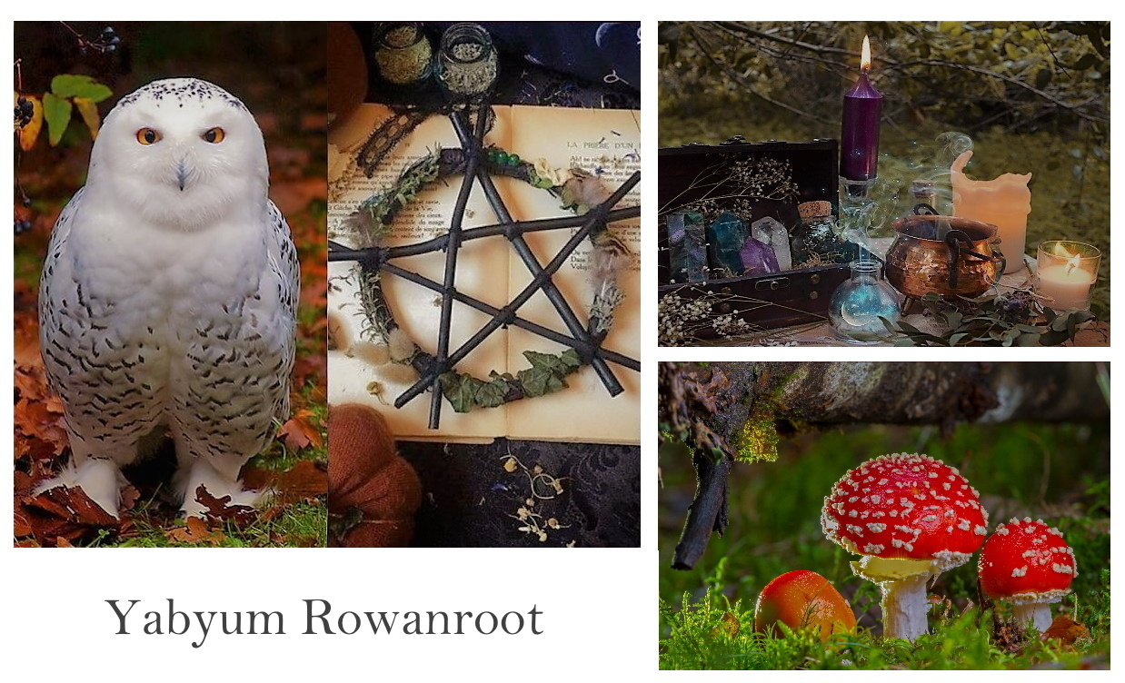 ☆☾ °Yabyum Rowanroot☾ Ecole d'Arts Magiques © all rights reserved☆Site Officiel