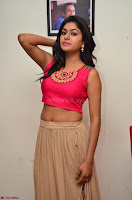 Akshita super cute Pink Choli at south indian thalis and filmy breakfast in Filmy Junction inaguration by Gopichand ~  Exclusive 027.JPG