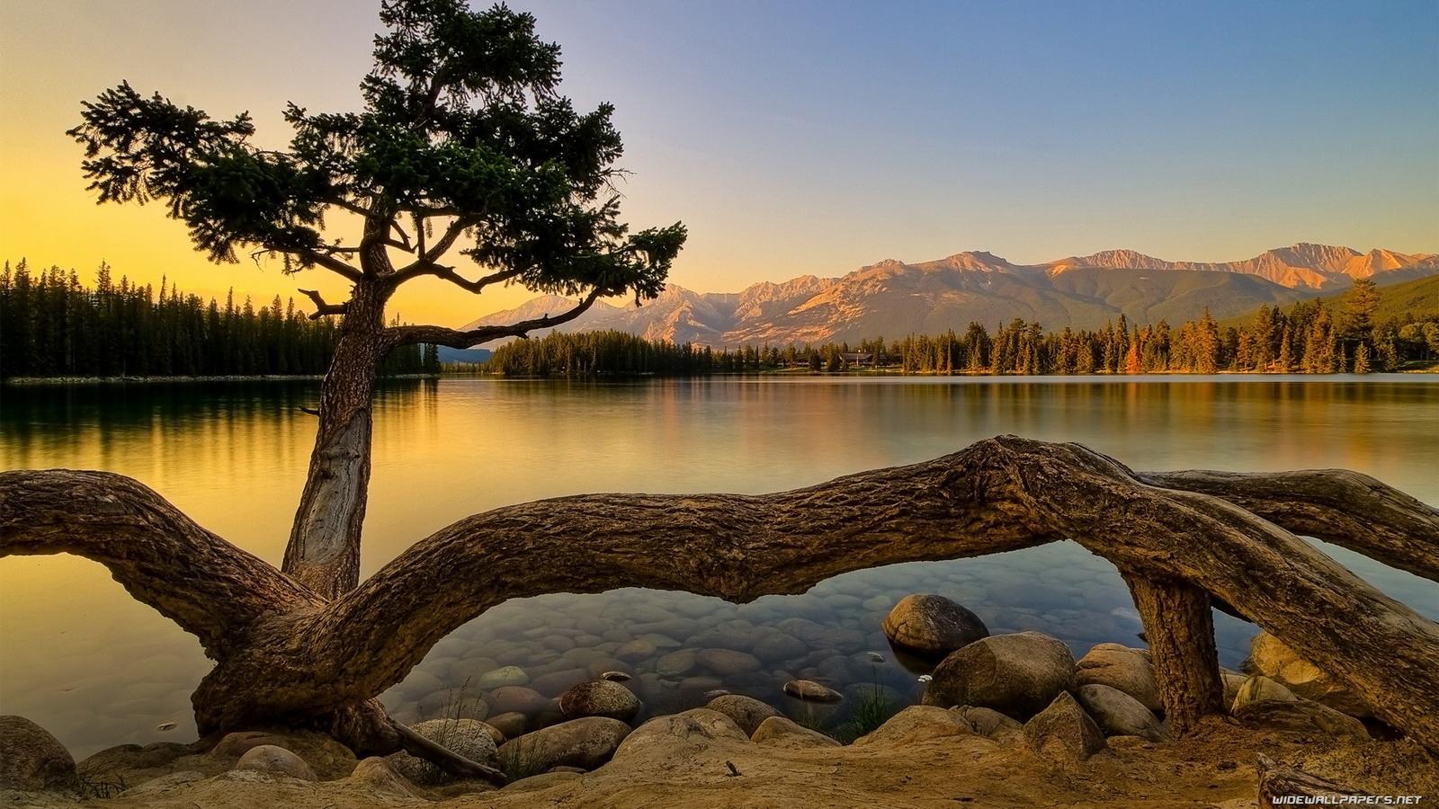 Japan: 3d Nature, Hd Nature Wallpapers for Desktop Background