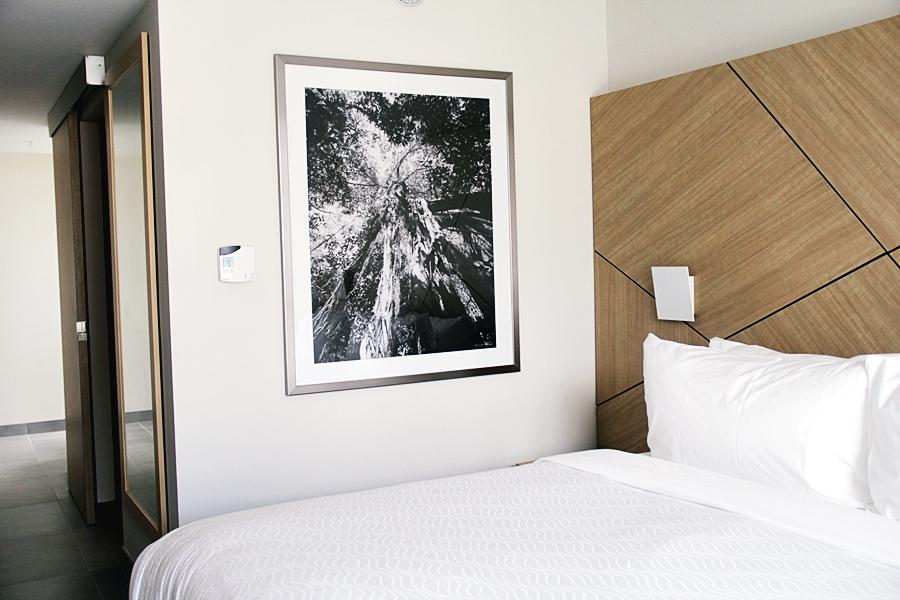 room decoration hotel travel