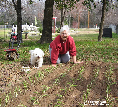 Planning Our Garden at Miz Helen's Country Cottage