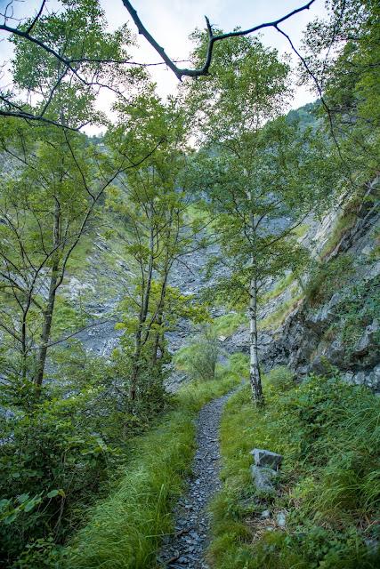 Rund ums Ellhorn  Wanderung Balzers  Fürstentum Liechtenstein 07