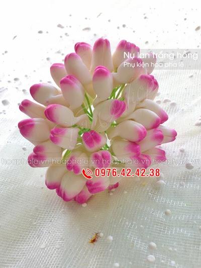 Phu kien hoa pha le tai Dong Anh