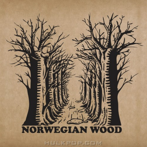 Norwegian Wood – Realize The Real Lies – EP