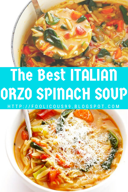 The Best ITALIAN ORZO SPINACH SOUP