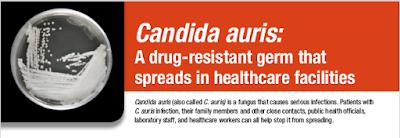 https://www.cdc.gov/fungal/diseases/candidiasis/pdf/Candida_auris_508.pdf