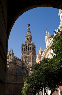 The giralda, Seville, seen from the Real Alcazar