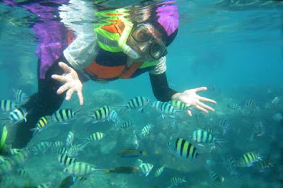 snorkling-pulau-tidung, outbound-pulau-tidung, Pulau-Tidung