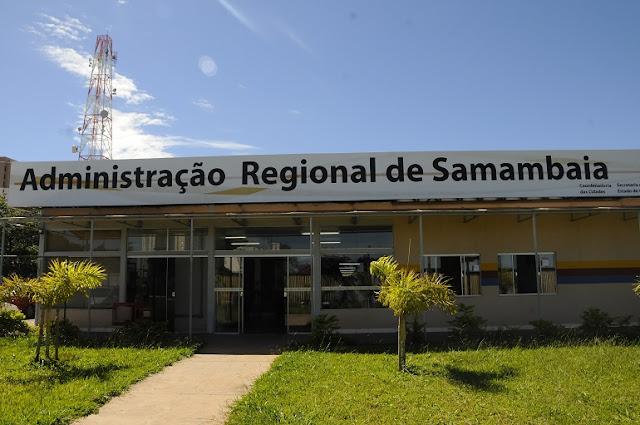 Resultado de imagem para administração de samambaia