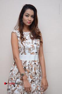 Telugu Actress Reshmi Thakur in Long Dress at Plus One ( 1) Audio Launch  0060.jpg