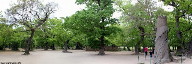 Bosque Gyerim
