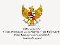 Pengumuman CPNS BKN 2017/2018