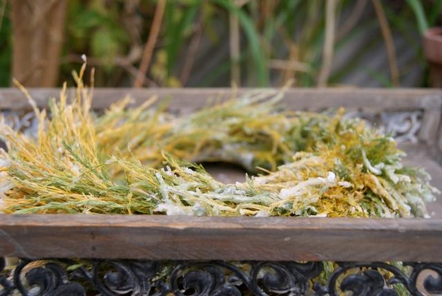 Gewachster Asparaguskranz auf Tablett dekoriert
